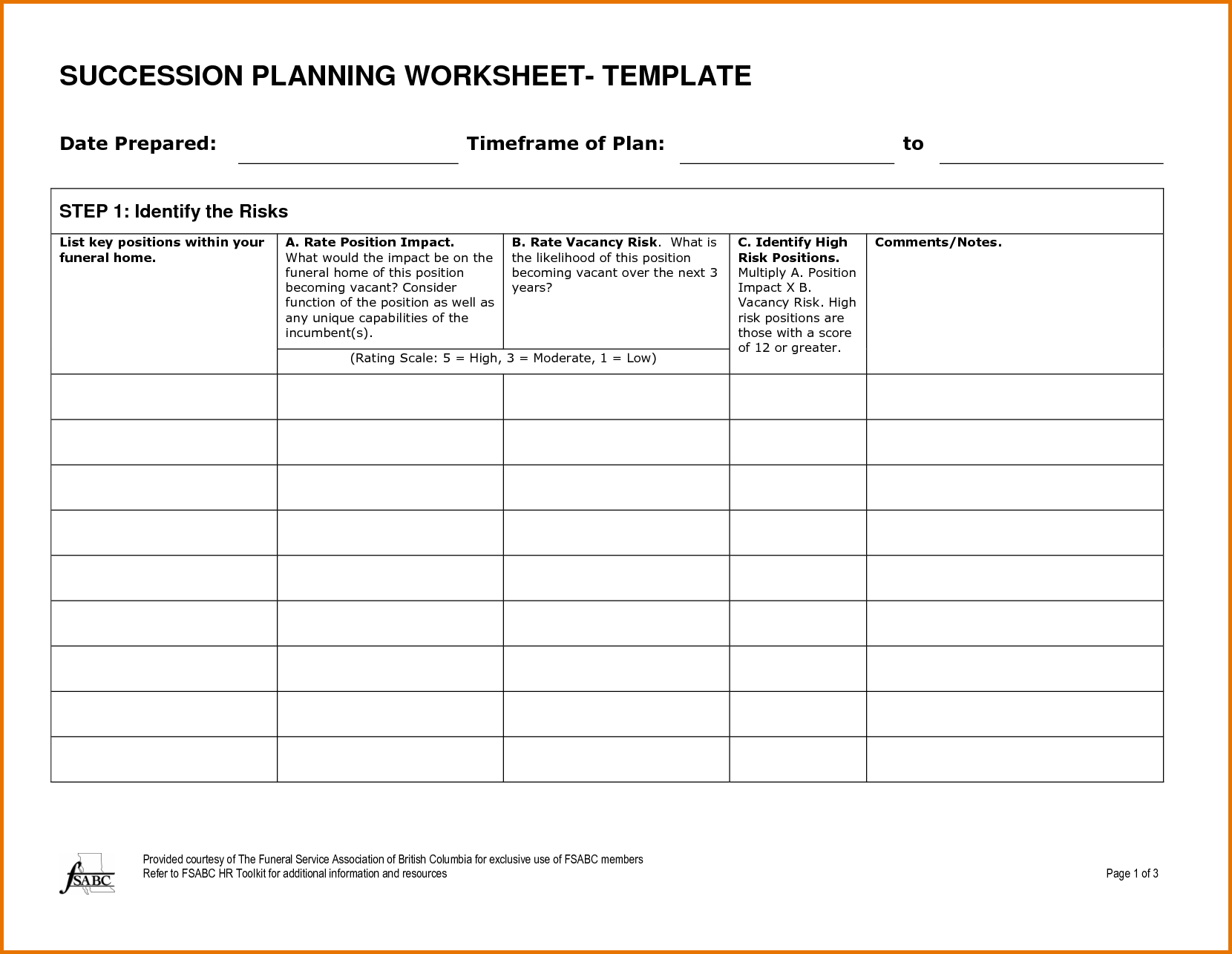 Succession Plan Template Formatted Blank