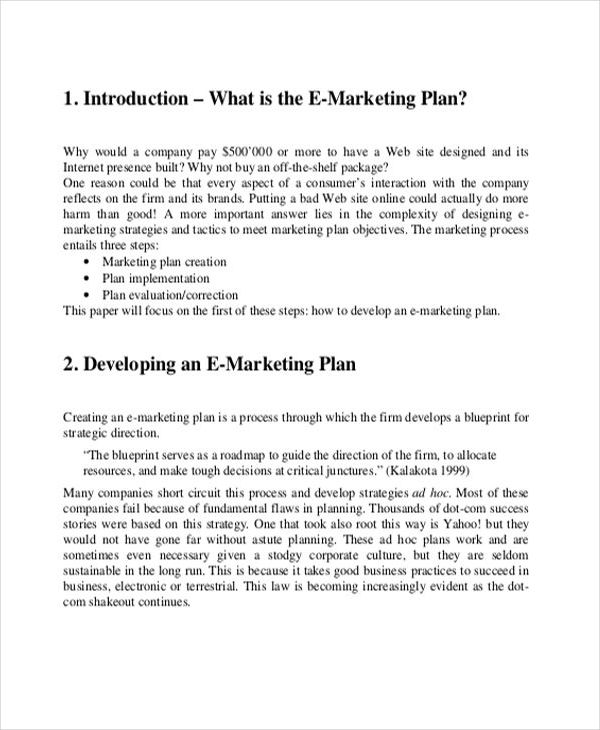 printable-doc-Email-Marketing-Business-Plan3