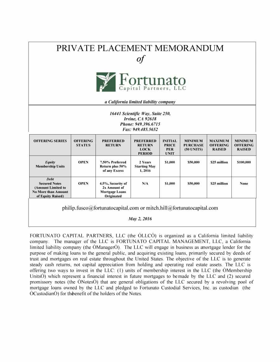 Printable Free Private Placement Memorandum Template 28
